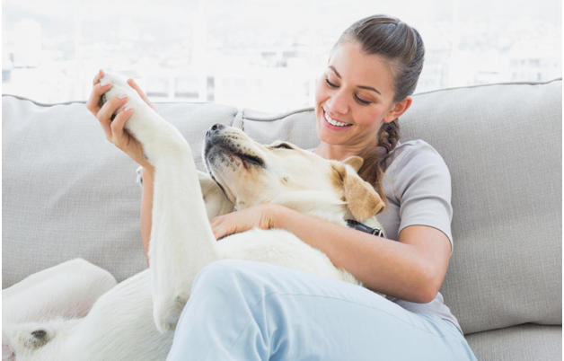 Making Your Home Electricals Pet-Safe